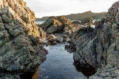 Βράχοι στον κόλπο διακοπτών Wellingtons, ηλιοβασίλεμα Στοκ Εικόνα