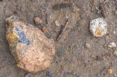 Βράχοι στο έδαφος Στοκ φωτογραφίες με δικαίωμα ελεύθερης χρήσης
