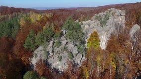 Βράχοι στο δάσος φθινοπώρου φιλμ μικρού μήκους
