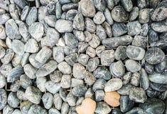 βράχοι στο πάτωμα Στοκ Εικόνα