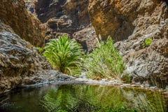 Βράχοι στο φαράγγι Masca, Tenerife, που παρουσιάζει τα σταθεροποιημένους ηφαιστειακούς στρώματα ροής λάβας και σχηματισμό αψίδων  στοκ φωτογραφία