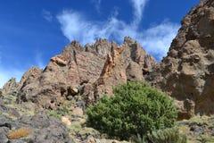 Βράχοι του κρατήρα Teide Στοκ Εικόνες