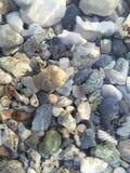 Βράχοι του Μίτσιγκαν λιμνών κάτω από το νερό στοκ εικόνες με δικαίωμα ελεύθερης χρήσης