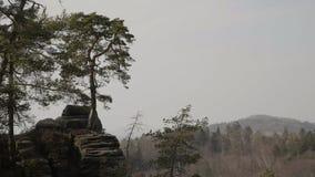 Βράχοι ψαμμίτη, βράχος massifs στο δάσος που αναρριχείται στο τοπίο, μεγάλες πέτρες φιλμ μικρού μήκους