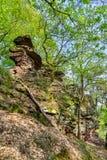 Βράχοι ψαμμίτη στο Παλατινάτο δασική Γερμανία Στοκ Εικόνα