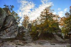 Βράχοι Dovbush, ομάδα βράχων, φυσικών και προκαλούμενων από τον άνθρωπο σπηλιών που χαράζονται Στοκ Εικόνες