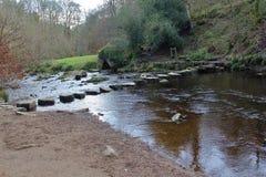 Βράχοι Hardcastle, δύση Yorskhire στοκ φωτογραφίες με δικαίωμα ελεύθερης χρήσης