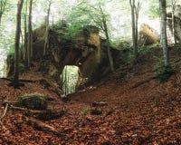 Βράχοι Sulov (Sulovske Skaly), Σλοβακία Στοκ φωτογραφίες με δικαίωμα ελεύθερης χρήσης