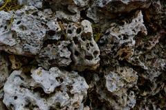 Βράχος λάβας Στοκ Εικόνες