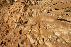 βράχος ασβεστόλιθων Στοκ Εικόνες