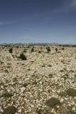 βράχος ερήμων στοκ εικόνες με δικαίωμα ελεύθερης χρήσης