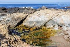 Βράχος και ασυνήθιστοι γεωλογικοί σχηματισμοί με άμπωτη Στοκ φωτογραφίες με δικαίωμα ελεύθερης χρήσης
