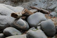 Βράχος κατασκόπων ματιών Στοκ Φωτογραφία