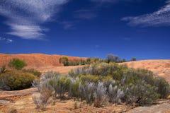 Βράχος κυμάτων, δυτική Αυστραλία στοκ φωτογραφίες