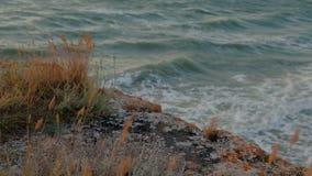 Βράχος με τα grasss και τη θάλασσα φιλμ μικρού μήκους