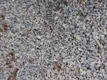 βράχος μικρός Στοκ φωτογραφία με δικαίωμα ελεύθερης χρήσης