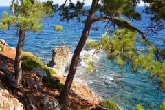 βράχος πεύκων Στοκ φωτογραφία με δικαίωμα ελεύθερης χρήσης