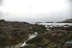 Βράχος πουλιών, παραλία χαλικιών, Drive 17 μιλι'ου, Καλιφόρνια, ΗΠΑ Στοκ εικόνα με δικαίωμα ελεύθερης χρήσης