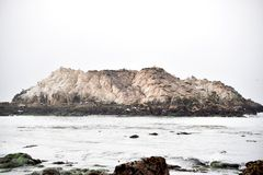 Βράχος πουλιών, παραλία χαλικιών, Drive 17 μιλι'ου, Καλιφόρνια, ΗΠΑ Στοκ φωτογραφία με δικαίωμα ελεύθερης χρήσης