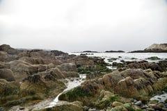 Βράχος πουλιών, παραλία χαλικιών, Drive 17 μιλι'ου, Καλιφόρνια, ΗΠΑ Στοκ Εικόνα