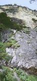 βράχος προσώπου απότομο&sigmaf Στοκ Φωτογραφία