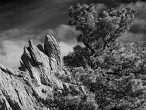 Βράχος προσώπου κογιότ Στοκ φωτογραφία με δικαίωμα ελεύθερης χρήσης