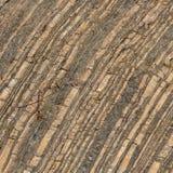 Βράχος στο πέτρινος-κοίλωμα, λεπτομέρεια, clouse επάνω Στοκ Φωτογραφίες