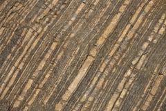 Βράχος στο πέτρινος-κοίλωμα, λεπτομέρεια, clouse επάνω Στοκ φωτογραφία με δικαίωμα ελεύθερης χρήσης