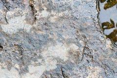 Βράχος στο υπόβαθρο νερού ποταμού στοκ εικόνες