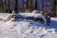 Βράχος στο χιόνι, Ελβετία/Ευρώπη στοκ φωτογραφίες με δικαίωμα ελεύθερης χρήσης