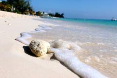 Βράχος συνεδρίασης του νερού στην αμμώδη παραλία στοκ εικόνα