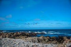 Βράχος της Κίνας, Drive 17 μιλι'ου, Καλιφόρνια, ΗΠΑ Στοκ Εικόνες