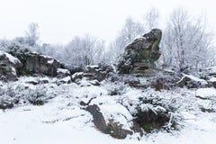 Βράχος φρύνων Στοκ εικόνες με δικαίωμα ελεύθερης χρήσης