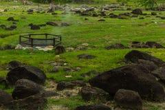 Βράχος hotspring κυνοδόντων Στοκ φωτογραφία με δικαίωμα ελεύθερης χρήσης