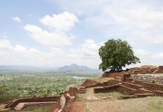 Βράχος Sigiriya Στοκ Φωτογραφία