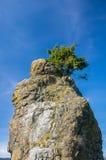 Βράχος Siwash στοκ φωτογραφία με δικαίωμα ελεύθερης χρήσης
