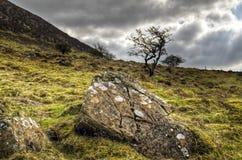 βράχος slemish στοκ εικόνες