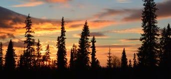 βράδυ Ηλιοβασίλεμα Στοκ Εικόνα