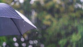 Βρέχοντας εποχή με τη μαύρη ομπρέλα στοκ φωτογραφίες με δικαίωμα ελεύθερης χρήσης
