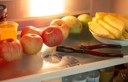 Βρήκε έναν πιό plier στο ψυγείο στοκ φωτογραφίες με δικαίωμα ελεύθερης χρήσης
