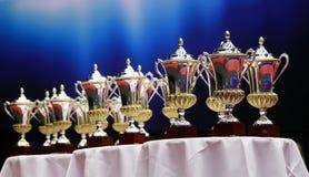 Βραβεία και φλυτζάνια Στοκ φωτογραφία με δικαίωμα ελεύθερης χρήσης
