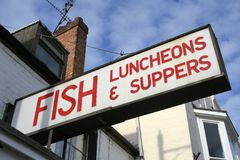 βραδυνά γευμάτων ψαριών Στοκ φωτογραφία με δικαίωμα ελεύθερης χρήσης