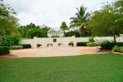 Βραδύτατος κήπος εγκαταστάσεων της Φλώριδας στοκ φωτογραφία με δικαίωμα ελεύθερης χρήσης