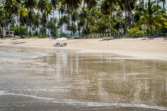 Βραζιλιάνα παραλία-παραλία Carneiros, Pernambuco Στοκ φωτογραφία με δικαίωμα ελεύθερης χρήσης