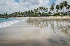 Βραζιλιάνα παραλία-παραλία Carneiros, Pernambuco Στοκ εικόνες με δικαίωμα ελεύθερης χρήσης