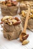 Βραζιλιάνο καρύδι και ξύλινα κουτάλια Στοκ εικόνες με δικαίωμα ελεύθερης χρήσης