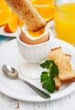 βρασμένα αυγά προγευμάτω&nu Στοκ φωτογραφίες με δικαίωμα ελεύθερης χρήσης