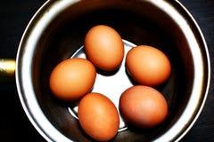 Βρασμένα αυγά στο κοχύλι στα εμπορεύματα σιδήρου Στοκ εικόνες με δικαίωμα ελεύθερης χρήσης