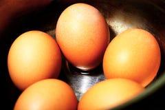 Βρασμένα αυγά στο κοχύλι στα εμπορεύματα σιδήρου Στοκ Φωτογραφία