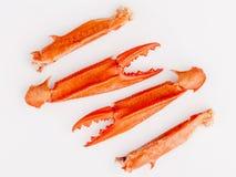 Βρασμένα νύχια καβουριών που απομονώνονται στο άσπρο υπόβαθρο για τα καβούρια και τη θάλασσα Στοκ Εικόνες